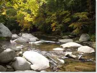 broad-river-in-hickory-nut-gorge